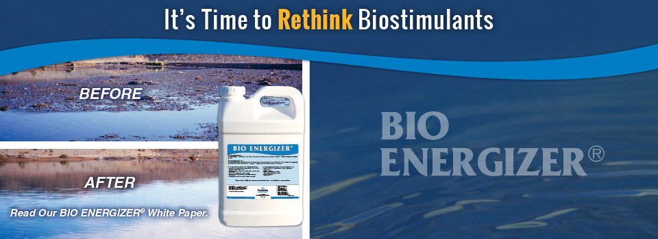 BIO ENERGIZER Before and After-01